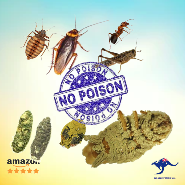 No Posison Ants Killer Products