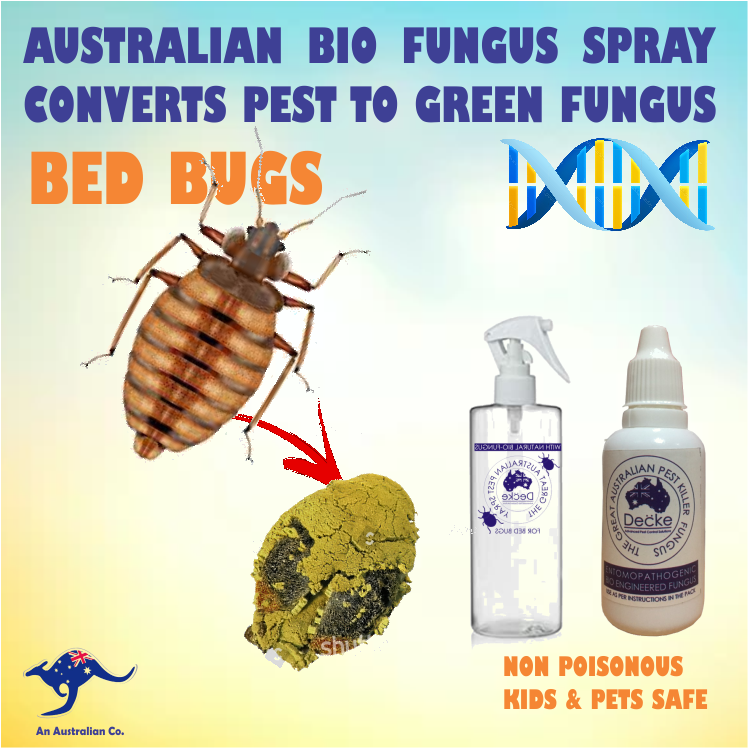 Bed Bugs Pest Control Products
